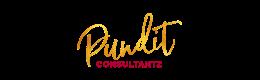 pundit-consultantz-logo